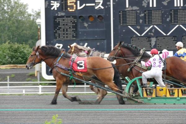 北海道帯広市のばんえい競馬