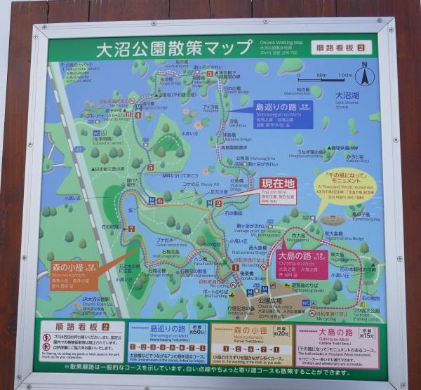 大沼公園の散策路の案内地図