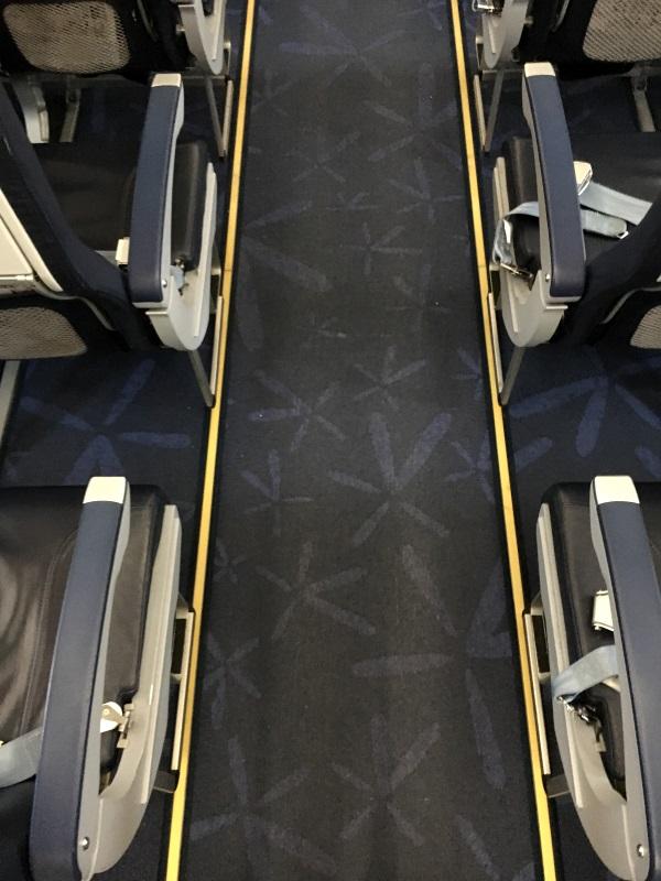 バニラの花の模様が描かれたバニラエアの機内通路のカーペット