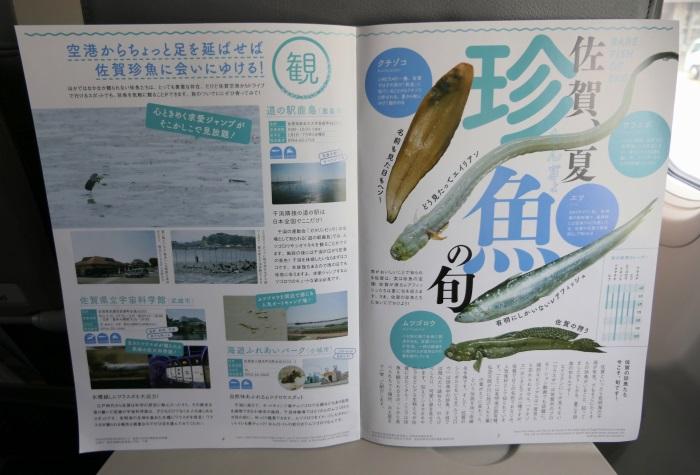 春秋航空日本(Spring Japan)の就航地の佐賀・有明海の「珍魚」を様々な角度で紹介