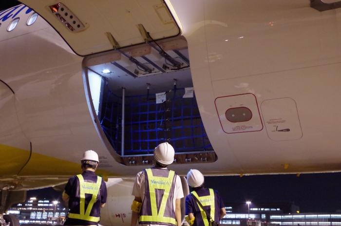 バニラエアの機体「JA11VA」の貨物室を眺める学生