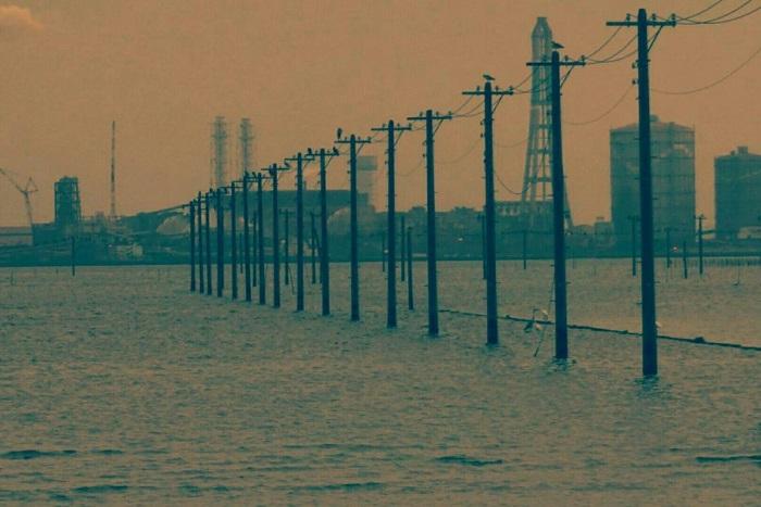 海に電柱が立ち並ぶ幻想的な写真が撮れる